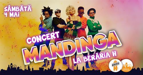 Concert Mandinga la Berăria H